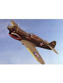 Electric Curtiss P-40